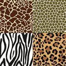 Leopard Print,Pattern,Animal Print,Leopard,Backgrounds,Seamless,Effortless,Animal,Zebra,Textured,Textured Effect,Zoo,Textile,Camouflage,Zebra Print,Giraffe,Africa,Animal Skin,Tropical Rainforest,Repetition,Abstract,Fashion,Vector,Brown,Wallpaper Pattern,Wildlife,Spotted,Close-up,Fabric Swatch,Design,Square,Snake,Material,Striped,Set,Animals And Pets,Series,Vector Backgrounds,No People,Illustrations And Vector Art,Ilustration,Animal Backgrounds,Collection,Color Image,Swatch