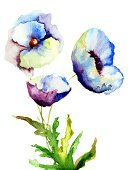 Flower Head,Flower,Watercolor Painting,Flowering Plant,Ilustration,Painted Image,Flower Arrangement