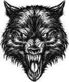 Wolf,Animal Head,Snarling,Dog,Human Face,Incomplete,Animals In The Wild,Fang,Animal,Painted Image,Vector,Pencil Drawing,Pen And Ink