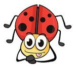 Nature,Wildlife,Spotted,Beetle,Insect,Isolated,Animal,Shiny,Red,Smiling,Ladybug,Sitting,Computer Graphic,Multi Colored,Backgrounds,Cute