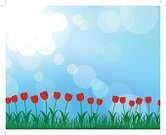 Single Flower,Field,Flower,Collection,Plant,Silhouette,Springtime,Vegetable Garden,Landscaped,Abstract,Pencil Drawing,Blade of Grass,Image,Ilustration,Branch,Plain,Bush,Art,Green Color,Drawing - Art Product,Design Element,Part Of,Season,Set,Backgrounds,Decoration,Forest,Back Lit,Tulip,Landscape,Flower Bed,Grass,Botany,Leaf,Painted Image,Remote,Herb,Nature,Outdoors,Lush Foliage,Floral Pattern,Summer,Candid,Vector,Butterfly - Insect,Environmental Conservation,Ornamental Garden,Horizon,Growth,Formal Garden,Design,Pattern,foliagé,Drawing - Activity,Land,Lawn,Horizon Over Land,Frame,Meadow,Gardening,Isolated