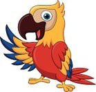 Characters,Bird,Ilustration,Cartoon,Cute,Mascot,Young Animal,Poultry,Pets,Vector,Wing,Flying,Animals In The Wild,Macaw,Waving,Cheerful,Multi Colored,Fun,Happiness,Humor,Waving