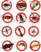 Pest,Pest Control Equipment,Termite,Ant,Cockroach,Insecticide,Insect,Flea,Spider,Symbol,Housefly,Animal,Mosquito,Rat,Parasitic,Danger,Harassment,Illness,Fear,Wasp,Warning Sign,Plaque - Bacteria ,Poisonous Organism,Biting,Rodent,Bloodsucking,Fly,Disgust