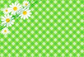 Daisy,Season,Springtime,Summer,Design,Bow,Flower,14 February,Pattern,Backgrounds,Love,Yellow,Green Color,Nature