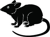 Rat,Silhouette,Astrology Sign,Back Lit,Black And White,Mouse,Chinese Zodiac Sign,Ilustration,Pest,Monochrome,East Asian Culture,Mythology,Drawing - Art Product,Fortune Telling,Symbol,Rodent,Holiday,Vector,Sign,Calendar,Year,Animal,Chinese Culture,White,Black Color,Computer Icon