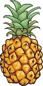 Ilustration,Drawing - Art Product,Pineapple,Leaf,Fruit,Ripe,Food,Clip Art,Freshness,Design,Single Object,Vector,Juicy,Healthy Eating,Dieting,Cartoon,Vegetarian Food,Healthy Lifestyle