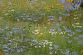 Impressionism,Paintings,Fine Art Painting,Painted Image,Oil Painting Background,Concepts And Ideas,Arts And Entertainment,Lavender Flowers,Time,Visual Art,Daisy,Brush Stroke,Grass,Springtime,white flowers,yellow flowers