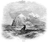 Water,Natural Phenomenon,Styles,Nostalgia,Victorian Style,Image Created 1860-1869,Coastline,History,Old-fashioned,Land Feature,Atlantic Ocean,Coastal Feature,Atlantic Islands,Image Created 19th Century,The Past,Antique,Rock Formation,Rock - Object,Land,Sea,1860-1869,Old,Rocky Coastline,Major Ocean,Engraved Image,North Atlantic Ocean,19th Century Style,Retro Revival,Ilustration
