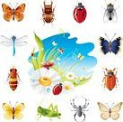 Insect,June Beetle,Animal,Grasshopper,Symbol,Icon Set,Dragonfly,Locust,Ilustration,Ladybug,Bee,Leaf,Spider,Single Flower,Floral Pattern,Sky,Emperor Moth,Vector,Moth,Collection,Springtime,Fly,Wasp,Chamomile Plant,Flying,Daisy,Grass,Chamomile,Landscape,Green Color,Nature,Summer,Butterfly - Insect,Beetle,Flower,Set