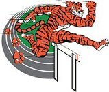 Track Event,Mascot,Tiger,Jumping,Smiling,Computer Graphic,Vector,Sports Track,Exercising,Ilustration,Wildlife,Playing Field,Characters,Animal,Undomesticated Cat,Sports Team,Sport
