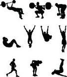 Sport,Exercising,Silhouette,Chin-Ups,Sit-ups,People,Vector,Squatter,Muscular Build,Crouching,Athlete,Men,Weight Bench,Male,Weight Training,Weightlifting,One Person,Computer Graphic,Adult,Young Adult,Physical Activity,Design Element