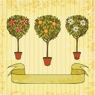 Orange Tree,Tree,Ilustration,Retro Revival,Ornamental Garden,Old-fashioned,Formal Garden,Backgrounds,Art,Doodle,Potted Plant,Cute,Small,Park - Man Made Space,Drawing - Art Product,Eps10,Green Color,Elegance,Simplicity,Design Element,Vector,Beauty In Nature,Abstract,Fairy,Backdrop,Beautiful,Outline,Style,Symbol,Pink Color,Ribbon