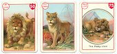 Three Objects,Three Animals,Ilustration,Ark,Young Animal,Lioness,Malc1,Happy Families,Cards,Cub,Print,Color Image,Lion - Feline,Design,Leisure Games,Chromolithography,Animal Family,Family,1900,Victorian Style,History,Horizontal,Ephemera