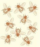 Bee,Honey Bee,Woodcut,Honey,Swarm of Insects,Beehive,Insect