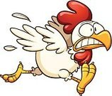 Chicken - Bird,Fear,Running,Cartoon,Rooster,Color Gradient,Isolated,Hen,Vector,Ilustration,White