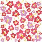 Summer,Tropical Flower,Design,Set,Seamless,Pattern,Purple,Vector,Single Flower,Ilustration,Multi Colored,Red,Vibrant Color
