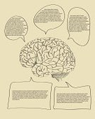 Infographic,Human Brain,Business,Doodle,Sketch,Concepts,Drawing - Activity,Ilustration,Vector