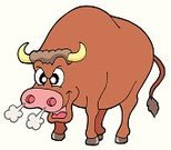Bull - Animal,Furious,Anger,American Bison,Tail,Cartoon,Domestic Animals,Mammal,Animal,Horned,Isolated,Male Animal,Vector,Fighting,Danger,Animal Nose