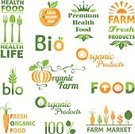 Farmer's Market,Sign,Farm,Design Element,Symbol,Pumpkin,Carrot,Leaf,Healthy Lifestyle,Design,Food,Computer Icon,Plant,Merchandise,Market,Vegetable,Vegan Food,Organic,Collection,Set,Freshness,Green Color,Retail,Wheat,Vegetarian Food,Nature