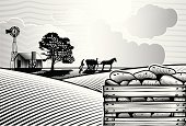 Farm,Raw Potato,Field,Old-fashioned,Retro Revival,Woodcut,Barn,Wind Turbine,Horse,Agriculture,Ilustration,Non-Urban Scene,Plowed Field,Crop,Vegetable,Black And White,Engraving,Rural Scene,Outdoors,Horizontal,Summer,potato field,Traditional Farming,Nature,Rough,grass field,Organic,Environment,Chimney,Relief Printing,Day,Tree,Vector,Sun,Cloud - Sky,Shire Horse,Drawing - Art Product,Farmer,Raw Food,Striped,Sky,Art Product,Single Line,Backgrounds,Harvesting,Print,Landscape