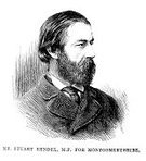 Engraved Image,Ilustration,Old-fashioned,Politician,Men,Male,Antique,Mature Men,Governmental Occupation,Facial Hair,Wales,Image Created 19th Century,Black And White,19th Century Style,Styles,People,UK,Beard,Old,Victorian Style,History,The Past,Member of Parliament