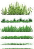 Grass,Growth,Drawing - Art Product,Blade of Grass,Springtime,Collection,Plant,Field,Nature,Long,Ilustration,Horizontal,Front View,Front or Back Yard,Vector,Weed,Vibrant Color,Turf,Set,No People,Floral Pattern,Clean,Textured,Meadow,Simplicity,Herb,Leaf,Summer,Season,Close-up,Outdoors,Colors,Pattern,Environment,Lawn,Gardening,Freshness,Isolated,White,Design Element,Backgrounds,Landscape,Scenics,Formal Garden,Green Color