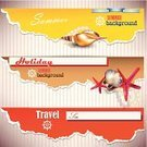 Torn,Animal Shell,Starfish,Summer,Backgrounds,Text,Vector,Copy Space,Ilustration,Color Image,Banner