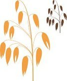 Crop,Oat,Vector,Sign,Symbol,Isolated,Autumn,Food,Seed,Yellow,Brown,Agriculture,Cereal Plant