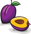 Plum,Food,Leaf,Vector,Refreshment,Freshness,Organic,Creativity,Color Image,Slice,Set,Ripe,Fruit,Raw Food,Purple,Remote,Healthy Eating,Drawing - Art Product,Clip Art,Isolated,Two Objects,Dieting,Ilustration,Gourmet,Sketch,Chopped