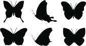 Butterfly - Insect,Silhouette,Vector,Black Color,Animal,Shape,Wing,Animal Themes,Insect,Art,Computer Graphic,Spread Wings,Group Of Animals,Ilustration,Icon Set,Wildlife,Digitally Generated Image,White Background,Illustrations And Vector Art,Insects,Animals And Pets,Isolated On White,Multiple Image,Set