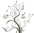 Calligraphy,Flower,flourishes,Scroll,Plant,Ornate,Floral Pattern,Scroll,Botany,Design,Branch,Curled Up,foliagé,Flowers,Summer,Nature,Nature,Abstract,Beauty,Curve,Silhouette