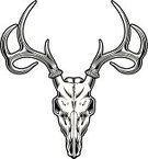 Deer,Animal Skull,Antler,Stag,Animal Head,Elk,Hunting,Rack,Anatomy,Vector,Animal Skeleton,Black And White Instant Print,Animal Bone,Black And White,Decoration,Clip Art,Design Element,Antelope
