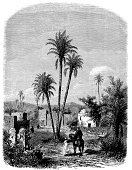 Desert Oasis,Engraved Image,Desert,Tree,Palm Tree,Engraving,Cultures,Old-fashioned,Black And White,House,History,Drawing - Art Product,Print,Isolated On White,Ilustration,Pencil Drawing,El-aghouat,Victorian Style,Art,Classical Style,Looking At Camera,Painted Image,Non-Urban Scene,Sketch,Antique,Isolated,Obsolete,19th Century Style,Retro Revival,Sahara Desert,Book,Urban Scene,Nature,Old,El-maia