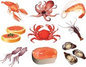 Squid,Octopus,Food,Animal,Prepared Shrimp,Prepared Crab,Fishing Industry,Vector,Salmon,calamary,Mussel,Menu,Bass,Carp,Computer Icon,Crayfish,Design,Prepared Fish,Set,Sea,Lobster,Seafood,Eps10,Striped Bass,Ikura,Sea Bass,Ilustration,Caviar
