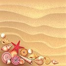 Sand,Beach,Animal Shell,Summer,Vector,Starfish,Textured Effect,Mollusk,Eps10,Nature,Design,Sea,Spiral,Cockleshell,Seashell,Poster,Backgrounds,Star Shape,Variation,Pattern