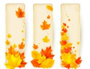 Banner,Leaf,Orange Color,Yellow,Vector,Ilustration