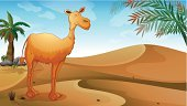 Hump,Day,Grass,Smiling,One Animal,Leaf,Tree,Computer Graphic,Herbivorous,Scenics,Land,Hill,Sand,Sky,four-legged,Animals In The Wild,Heat - Temperature,Photograph,Dirt,Image,Outdoors,Blue,Palm Tree,Fern,Animal,Camel,Brown,Green Color,Weed,Desert,Cloud - Sky,Loneliness,Orange Color,White,Mammal