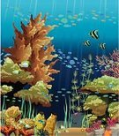 Sea,Coral,Reef,Cartoon,Blue,Animal,Animals In The Wild,Image,Fish,Water,Underwater,Summer,Light - Natural Phenomenon,Deep,Vector,Life,Ilustration,Seascape,Wildlife,Tropical Climate,Nature