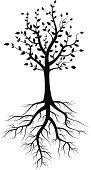 Root,Tree,Silhouette,Abstract,Cultivated,Isolated,Growth,Old,Vector,Environment,No People,Ilustration,Tendril,Allegory Painting,Decoration,Springtime,Grunge,Life,Autumn,Plant,Stem,Nature,Rough,Painting,Black Color,Moving Up,Curled Up,Natural Disaster,New,Pattern,Summer,Symbol,Branch,Botany,Part Of,Organic