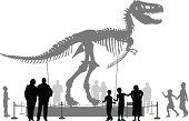 Dinosaur,Museum,Silhouette,Animal Skeleton,Child,Extinct,Exhibition,Reptile,Tyrannosaurus Rex,Showing,Copy Space,Education,People,Animal,text-space,Animal Bone,Vector,Large,Prehistoric Era,Standing,Awe,Vertebrate,Monster,Carnivore,Outline,Ilustration,Scale