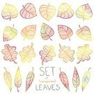 Leaf Vein,Symbol,Computer Icon,Leaf,Backgrounds,Oak Tree,Autumn,Floral Pattern,Brown,Orange Color,Falling,Decoration,White,Colors,Brightly Lit,Image,Nature,Computer Graphic,Vitality,Bright,Ilustration,Oak,Plant,Season,Candid,Magnifying Glass,Set,Group of Objects,Drawing - Activity,Design,Abstract,September,Pattern,Art,Black Color,Green Color,Part Of,Collection,Design Professional,Red,Yellow,Vector,Painted Image,Plan,Multi Colored,Vibrant Color,Park - Man Made Space,Isolated,Outline,Autumn Collection,Paintings,Forest,October,Gold Colored,Striped,Drawing - Art Product,Botany,Design Element,Color Image
