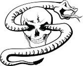 Snake,Human Skull,Vector,Rattlesnake,Tattoo,Anger,Creativity,Gothic Style,Death,Cobra,Concepts And Ideas,Halloween,Religion,Black And White,Black Color,Viper,Film Noir Style,Ink,Gore,White Background,Rotting,Horror,Ilustration,Spooky,Fear