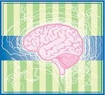 Human Brain,Backgrounds,Electricity,Thinking,People,Illustrations And Vector Art,handcarves