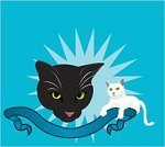 Domestic Cat,Black Color,White,Scroll,Color Image,Two Animals,Cats,Animals And Pets,Horizontal,Blue,Animal