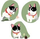 French Bulldog,Fun,Butterfly - Insect,Jumping,Playing,Dung,Dog