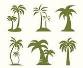 Palm Tree,Vector,Plant,Summer,Symbol,Set,Tree,Nature,Ilustration,Abstract,Tall,White,Leaf