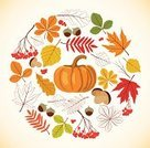 Retro Revival,Thanksgiving,Autumn,Forest,Tree,Design,Leaf,Pattern,Colors,Design Element,Nature,Falling,Rowan Tree,Ornate,Abstract,Pumpkin,October,Orange Color,Oak,Set,Multi Colored,Mushroom,Acorn,Plant,Part Of,Vector,Ilustration,Edible Mushroom,Season,Decoration,Rowanberry,Backgrounds,Yellow,Maple,September,foliagé,Isolated,Red
