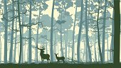 Forest,Deer,Woodland,Silhouette,Pine Tree,Landscape,Tree,Pine,Elk,Animal,Vector,Nature,Animal Themes,Wildlife,Backgrounds,Doe,Cedar Tree,Animals In The Wild,Panoramic,Abstract,Scenics,Cartoon,Ilustration,Stem,Hill,Female Deer,Non-Urban Scene,Horizontal,Tree Trunk,Dusk,Horizon Over Land,Horned,Horizon