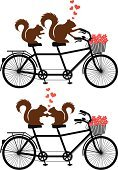 Squirrel,Tandem Bicycle,Love,Silhouette,Bicycle,Sport,Red,Togetherness,Cycling,Animal,Wedding,Teamwork,Bicycle Pedal,Computer Graphic,Cute,Chipmunk,Drawing - Art Product,Valentine Card,Sitting,Heart Shape,Cartoon,Wheel,Heterosexual Couple,Ilustration,Single Object,Cycle,Isolated,Tandem,Valentine's Day - Holiday,Basket,Vector,Single Flower,Transportation,Family,Black Color,White,Bonding,Happiness,Flower