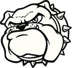 Bulldog,Black Color,White,Pet Collar,Animal Teeth,Displeased,Anger,Furious,Large,Pride,Serious,Dogs,Animals And Pets,Oversized